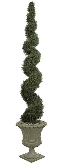 10 Foot Spiral Cypress Topiary