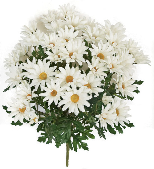 20 Inch IFR White Daisy Bush