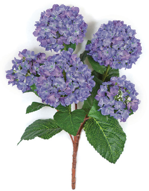 21 Inch Hydrangea Bush - IFR or Regular Foliage