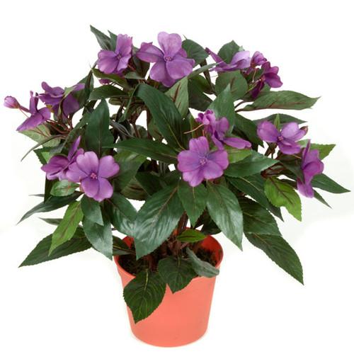 14 Inch Potted Impatiens Plants -  Lavender, Coral, Cerise