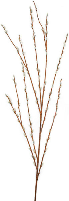 57 Inch Pussy Willow Spray