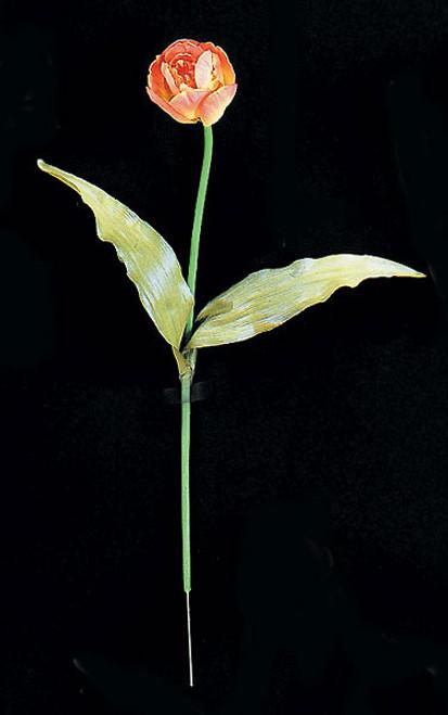 20 Inch Orange Tulip Stem (SOLD BY THE DOZEN)