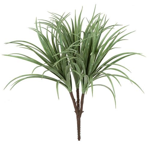 28 Inch  Liriope Bush x 3 - Cream/Green
