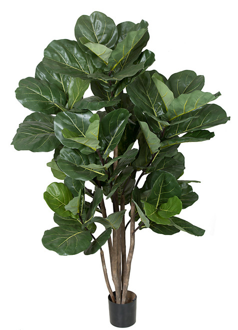 68 Inch Fiddle Leaf Tree