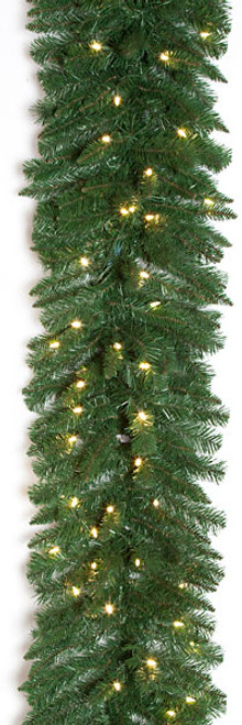 C-130454