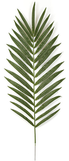 48 Inch Kentia Palm Branch (sold per piece)