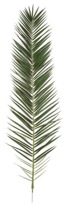 87.5 Inch IFR Phoenix Palm Frond - Dark Green (Sold Per Piece)