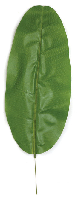 28.5 Inch Banana Palm Leaf (Sold by the Dozen)