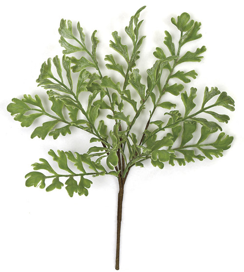 15 Inch Fern Bush