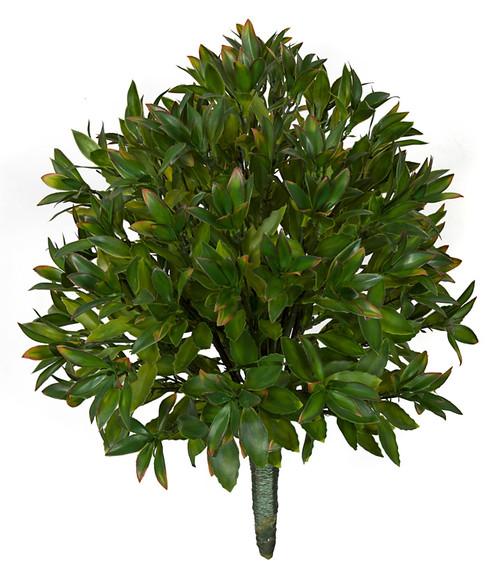 24 Inch IFR Magnolia Leaf Bush