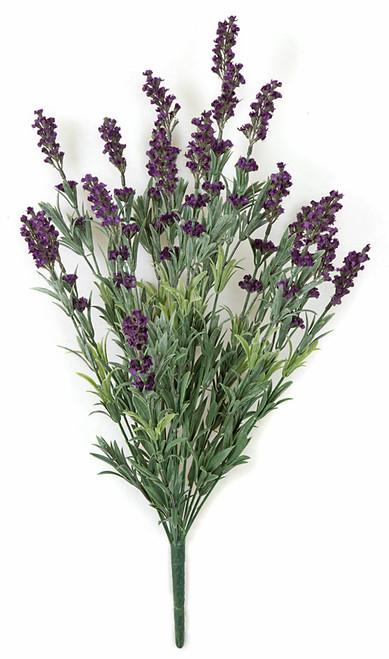 24 Inch Lavender Bush - Dark Purple