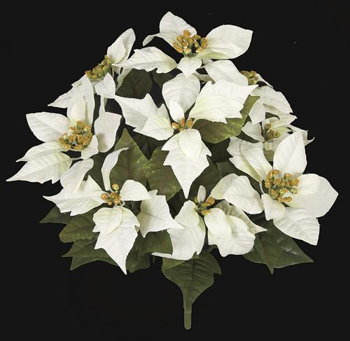 14 Inch Poinsettia Bush