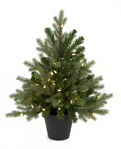 24 Inch Wilshire Spruce Tree