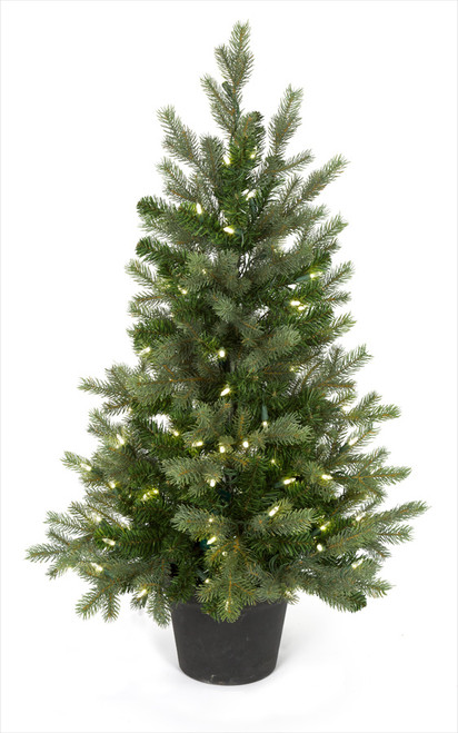 36 Inch Wilshire Spruce Tree
