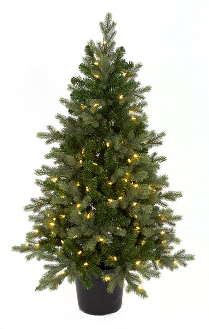 """C-171724 48"""" Wilshire Spruce Tree with Pot"""