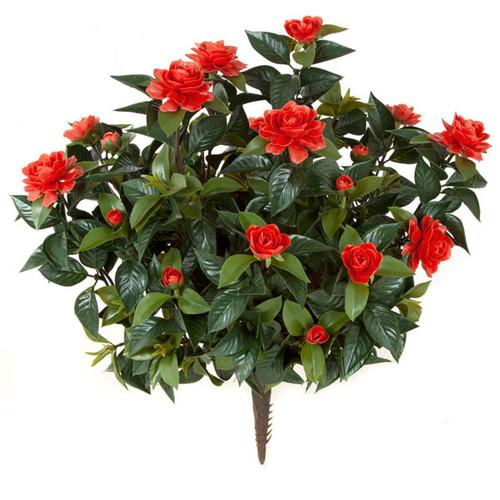 28 Inch Outdoor Red Gardenia Bush