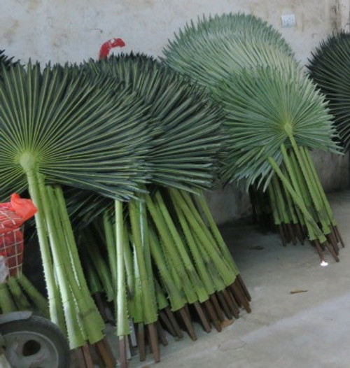 69 Inch UV Fan Palm