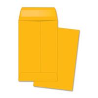 Coin Envelope, 500pk