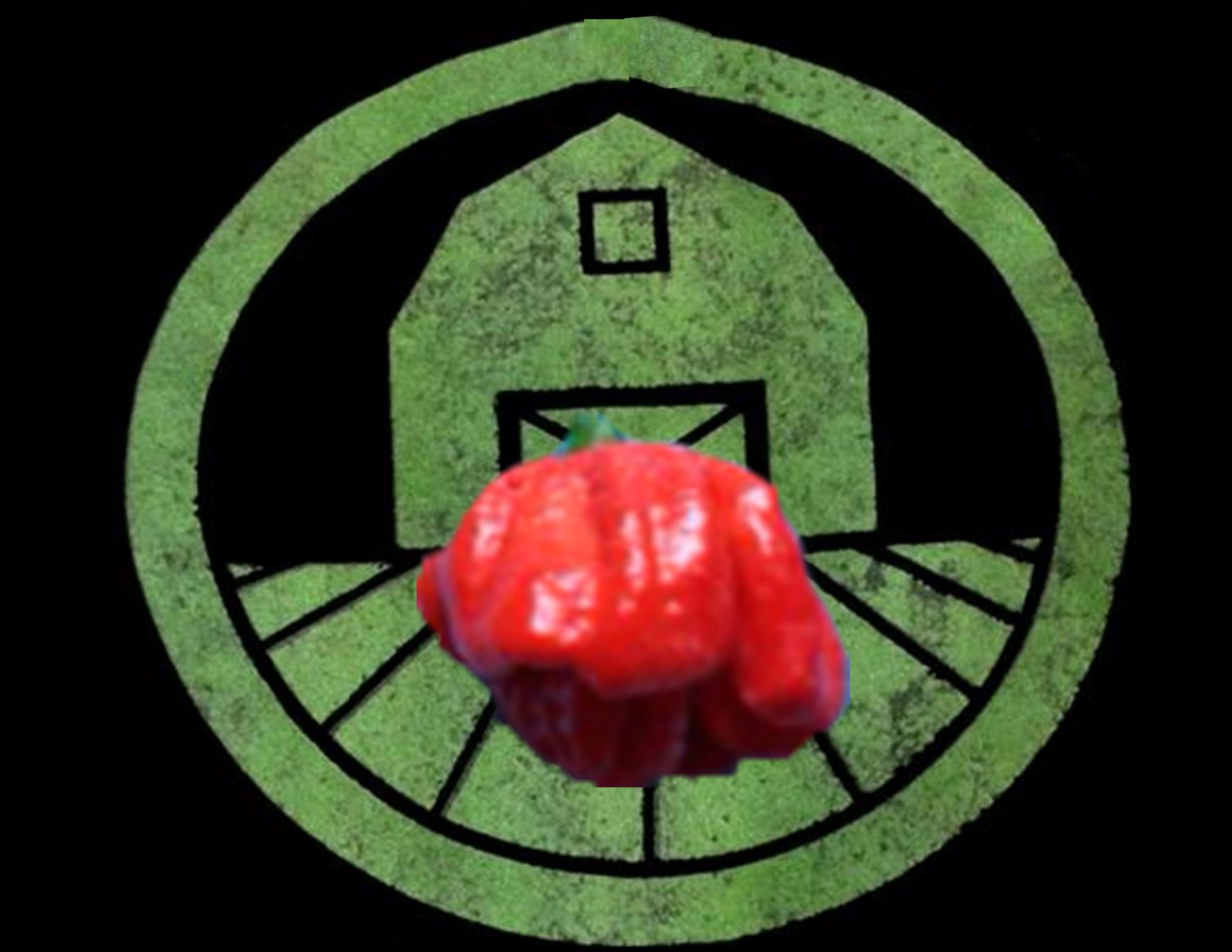 Red 7 Pot Pepper | Tyler Farms
