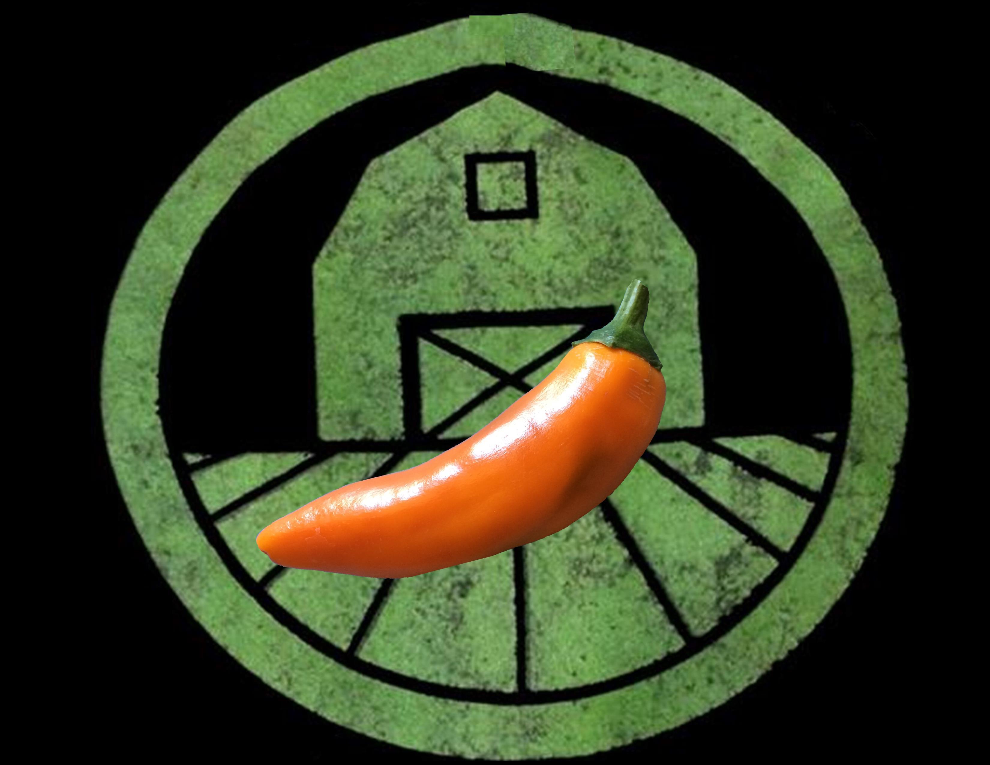 Bulgarian Carrot Pepper | Tyler Farms