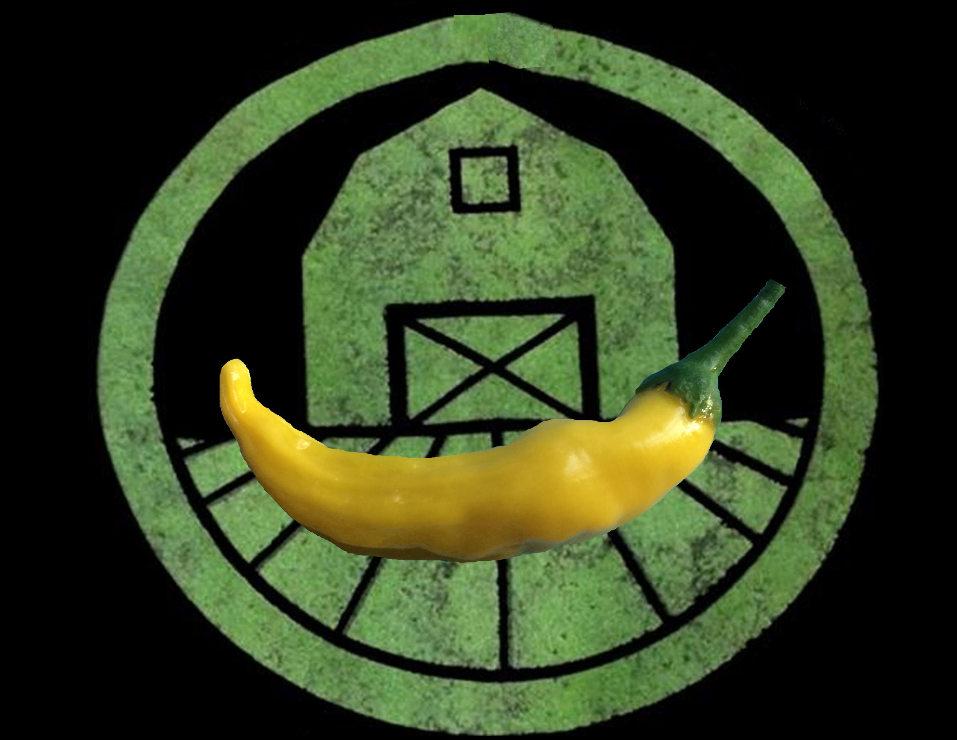 Lemon Drop Pepper | Tyler Farms