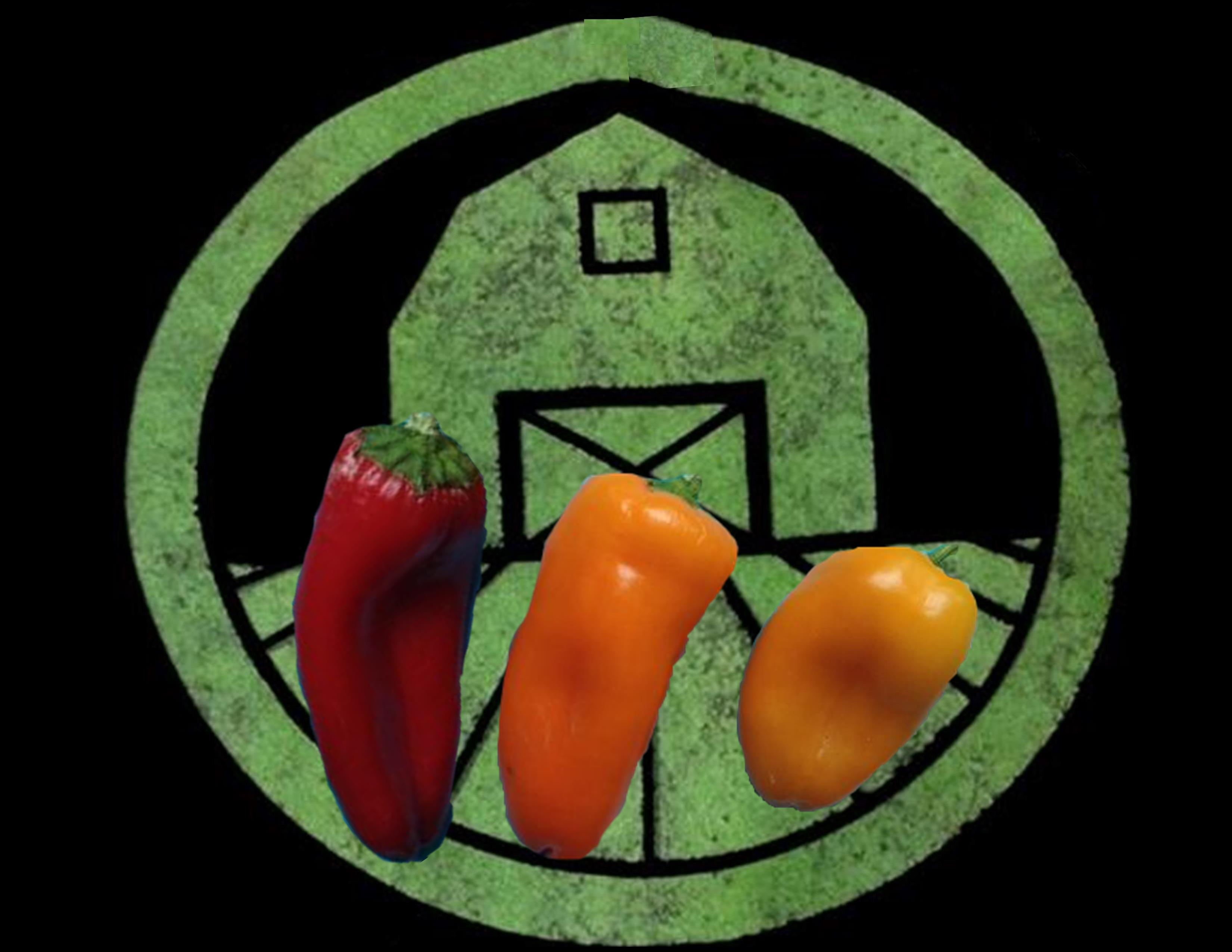 Mini Sweet Peppers | Tyler Farms