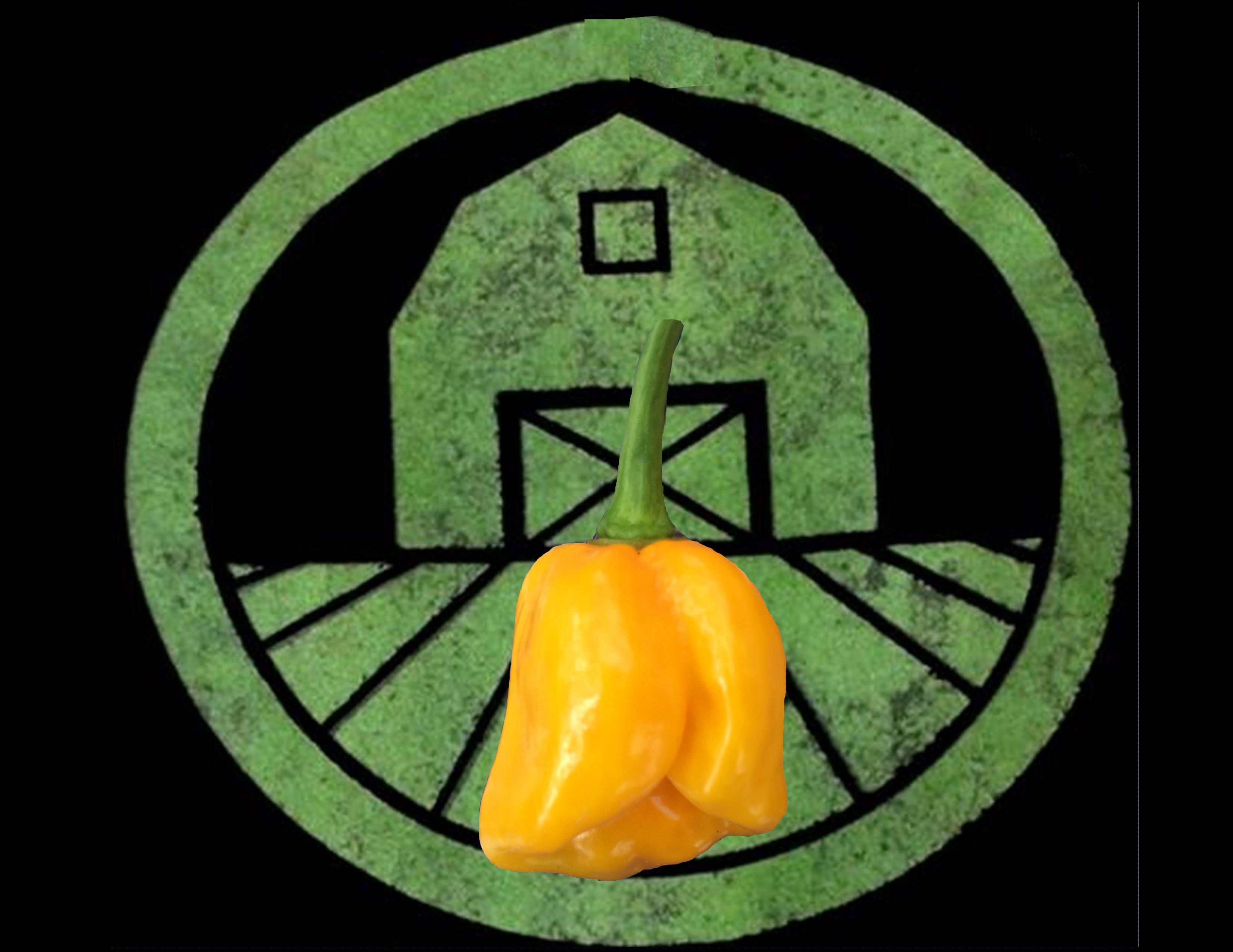 Yellow 7 Pot Pepper | Tyler Farms