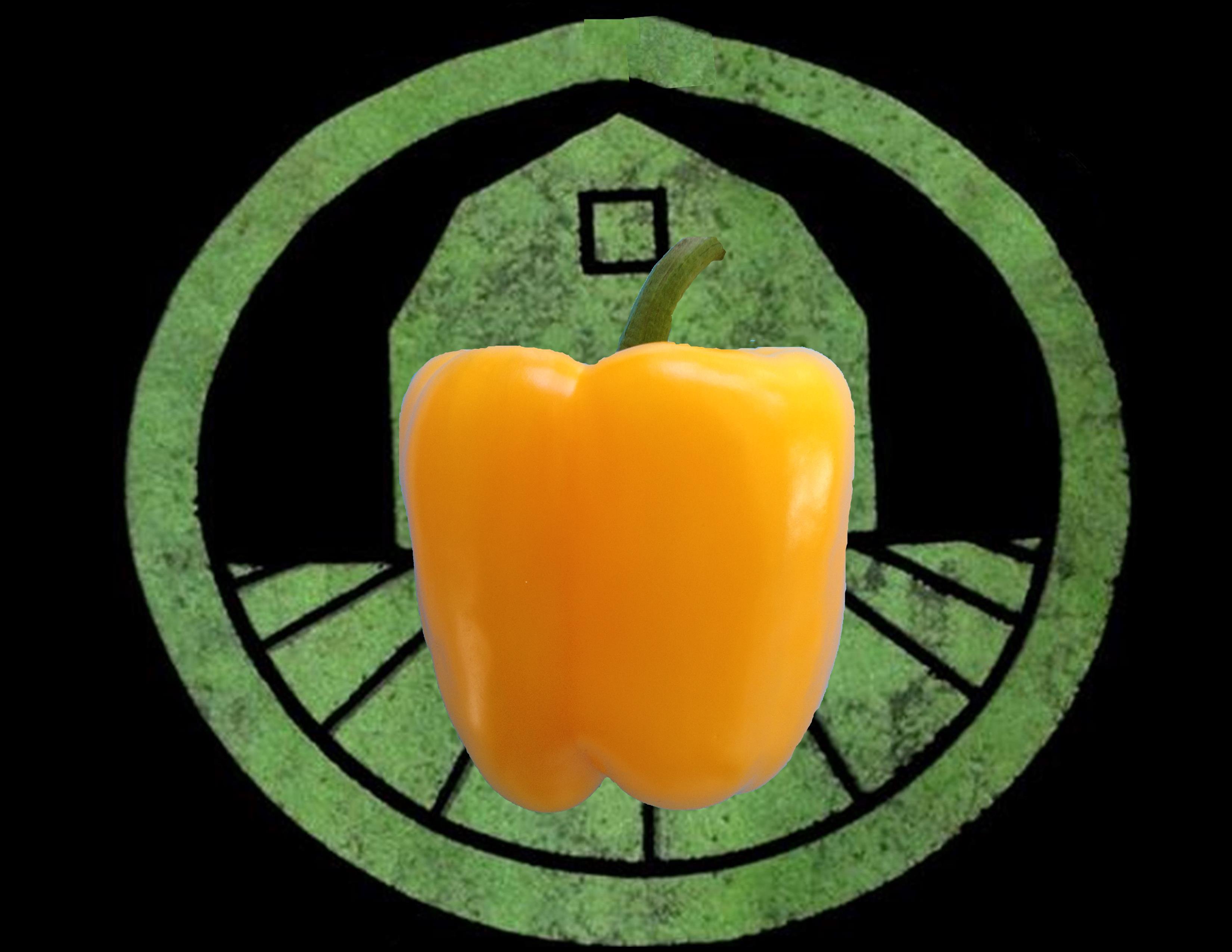 Yellow Bell Pepper | Tyler Farms