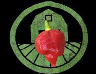Red Trinidad Scorpion | Tyler Farms