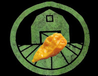 Ghost (Yellow Bhut Jolokia) Pepper Seeds