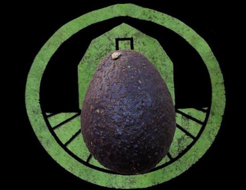 Hass Avocado | Tyler Farms
