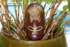 "FIJIAN TIKI MASK W/ CARVED TURTLE - 12"" LUCKY - POLYNESIAN ART"