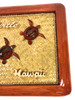 "Elegant Frame w/ Sea Turtles 15"" X 11"" - Mango Wood 