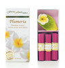 PLUMERIA INCENSE W/ CERAMIC HOLDER - HAWAIIAN GIFT BOX SET