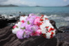 "Carnation Combo Leis, Assorted, 6 Pack 18"" - Hawaii Silk Leis"