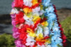 "Baby Carnation Assorted, 6 Pack 18"" - Hawaii Silk Leis"