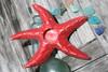 """STARFISH"" CANDLE HOLDER - RED COASTAL 9"" - COASTAL DECOR"