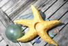 """""""STARFISH"""" CANDLE HOLDER - YELLOW COASTAL 9"""" - COASTAL DECOR"""