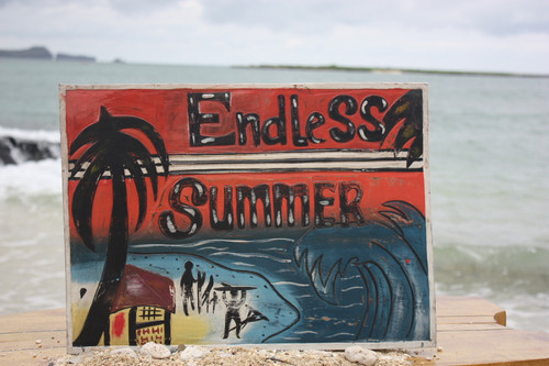 """ENDLESS SUMMER"" CARVED/PAINTED 20"" RELIEF - SURF DECOR"