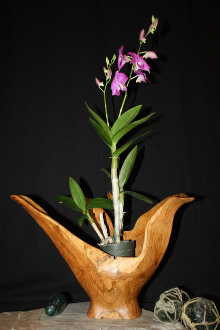 "Wooden Vase Rustic Bowl Sculpture 18"" X 19"" X 15"" 