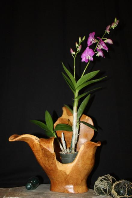 "Wooden Vase Rustic Bowl Sculpture 14"" X 11"" X 15"" | #hwa172"
