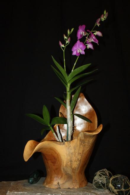"Wooden Vase Rustic Bowl Sculpture 13"" X 10"" X 17"" | #hwa173"