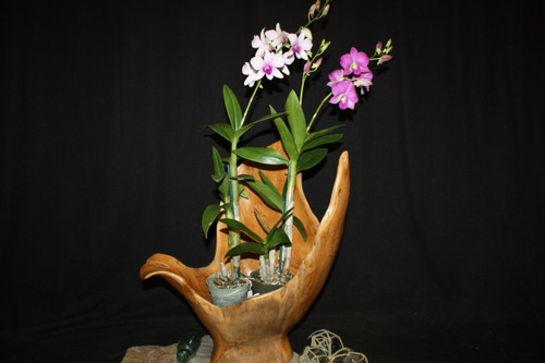 "Wooden Vase Rustic Bowl Sculpture 20"" X 15"" X 21"" 