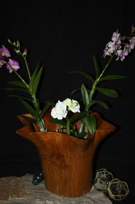 "Rustic Vase Flower Wooden Teak Bowl 17"" x 18"" x 13"" | #hwa225"