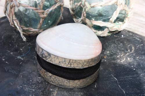 Seashell Keepsake Box Medium - White - Coastal Decor 2