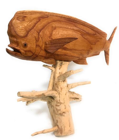 "Mahi Mahi Hand Carved 32"" w/ Drift Wood Base | #ton02"