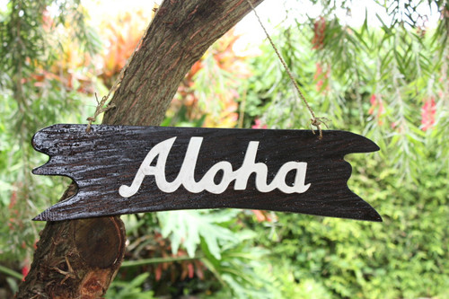 """Aloha"" Sign on Driftwood 20"" - Wooden Greeting Sign"