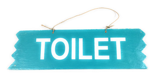 "Cute ""Toilet"" Wooden Sign 12"" X 4"" - Blue 