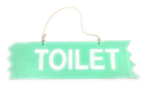 """Cute """"Toilet"""" Wooden Sign 12"""" X 4"""" - Turquoise 