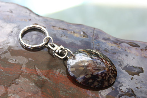 Keychain Seashell w/ Inlay Sea Life #2 - Aloha Keychain